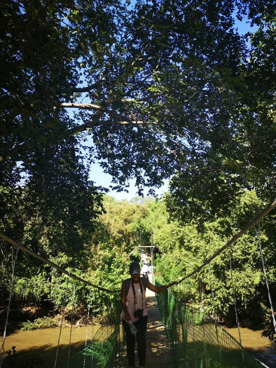 Hennops hiking trail suspension bridge